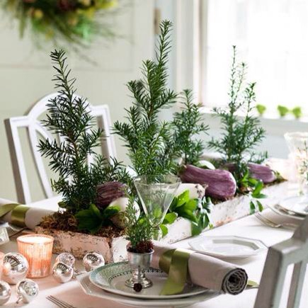 Tiny trees  Foot-high yew trees, with root balls nestled in moss, look fresh lined up in a galvanized tray. Anchor with white and purple eggplants for an all-natural centerpiece.