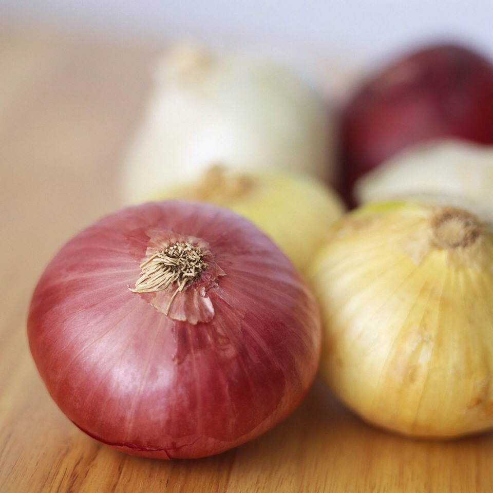 Onion is the nature antibiotic, in some eastern country they call onion the pharmacy of nature.
