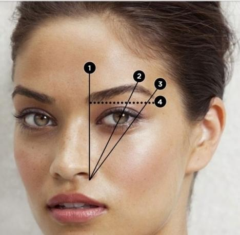 This is a useful guide for when you're plucking your eyebrows.