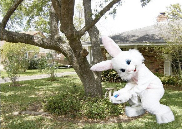 Become super spies while you and your kid/kids try and catch the Easter bunny! You can set up cameras and everything!