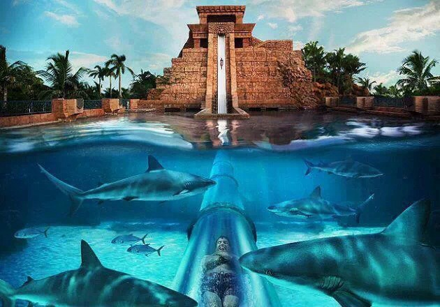 Mayan Temple Waterslide Atlantis Bahamas