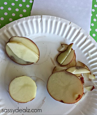 Step 1: Start by cutting a potato in half then cutting one half into a bunny ear shape. Leave the other half just the way it is and cut the smaller potato into a circle.