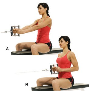 Seated cable row: 3 sets of 15 reps