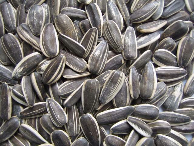 Sunflower seeds:  Just a few little seeds can supply you with an abundance of vitamin E, which will enhance blood flow to the scalp and promote faster hair growth.