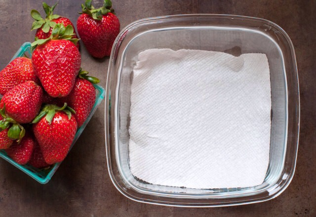 Take out a glass or plastic storage container that has an airtight lid. Line the bottom of the container with a paper towel.  You may have to tear it in half like I did to fit the container.  The paper towel helps to absorb any moisture.