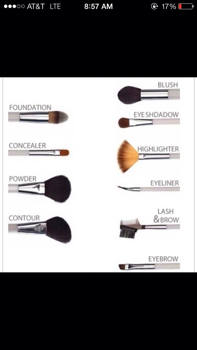Which brush should YOU use?