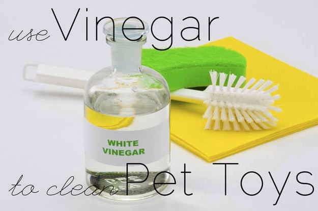 Among other things, vinegar can be used for soaking smelly pet toys. It zaps the odor without adding harsh chemicals that pets will ingest.