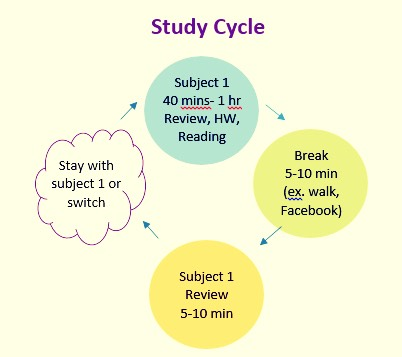Taking breaks between studying will help you stop feeling too tired. This will also boost your memory to remember key information 🔙🔛⏱