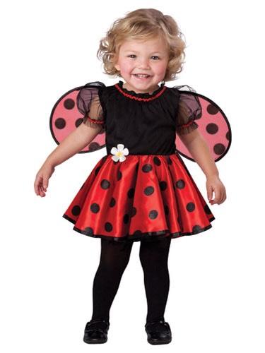 3. Ladybug