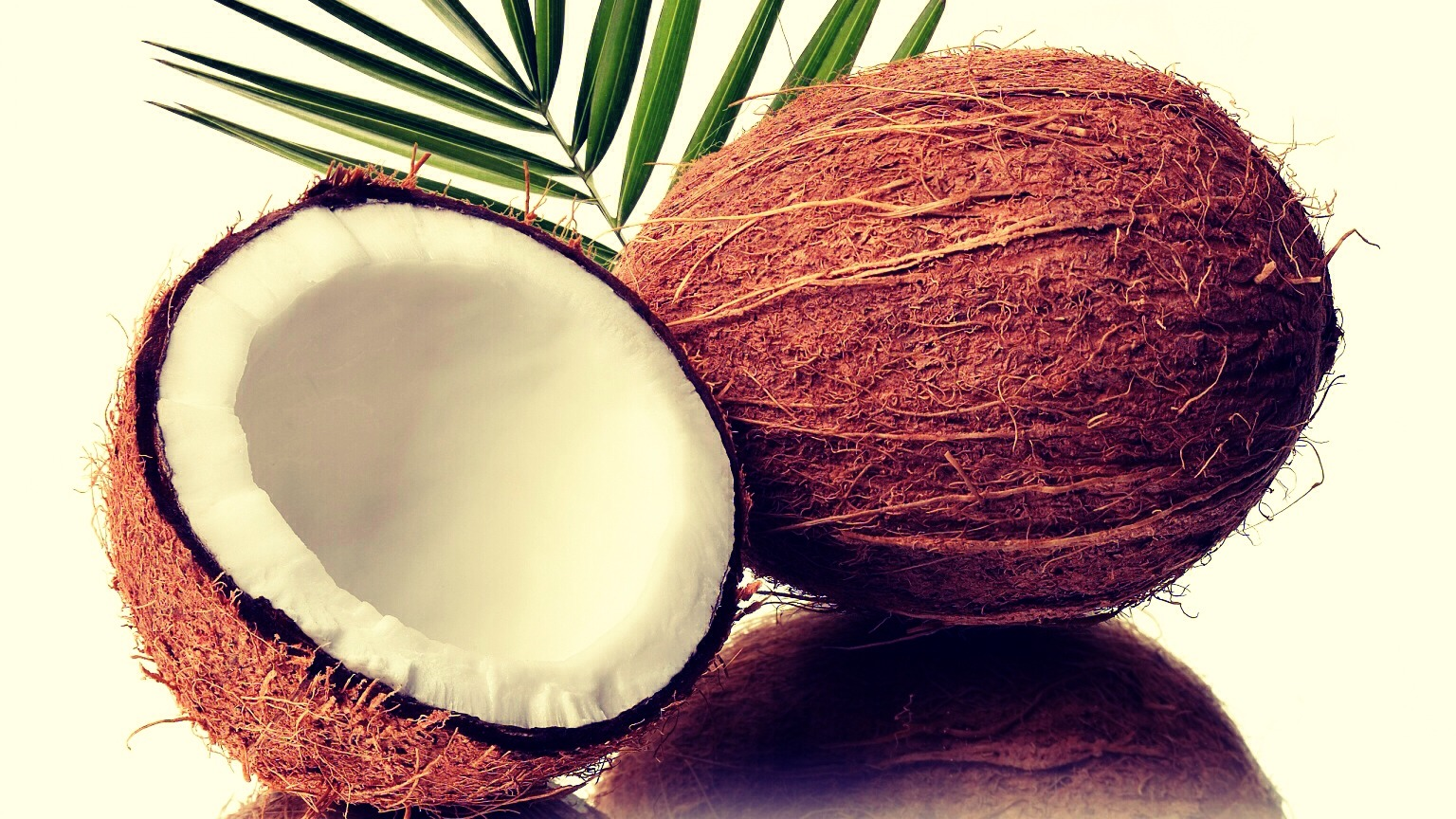 1. Melt the coconut oil at low heat (it melts fast), but don't let it get too hot. If it does DO NOT put it in your hair. Let it cool for a couple minutes. Then pour into your hair. Make sure your hair is completely saturated with the oil.