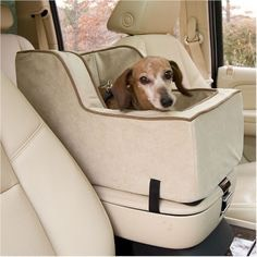 7. Build a custom made car seat in the compartment for your little furry friend
