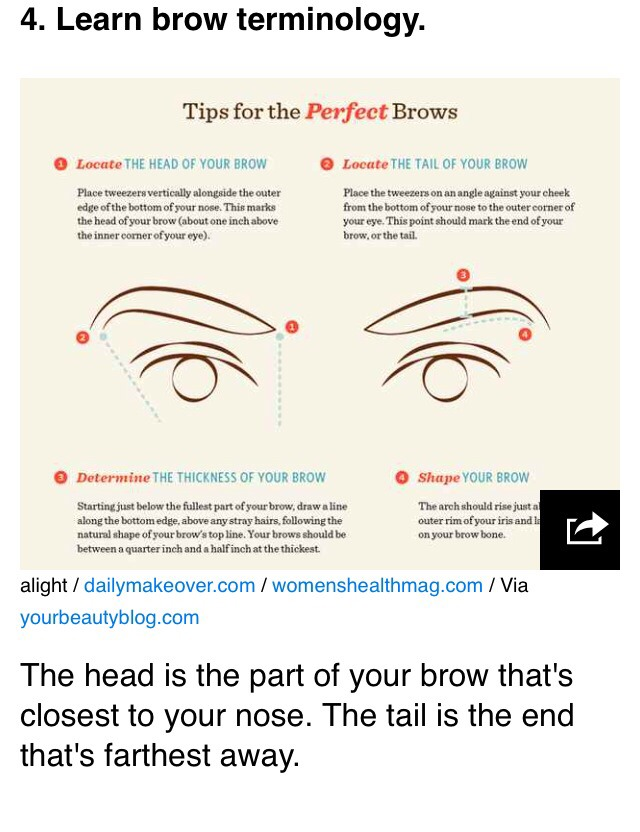 Eyebrow Diagrams That Will Explain Everything To You By