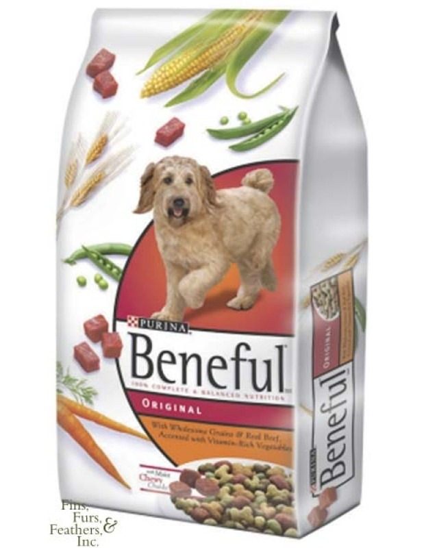 Is Meal Better Than Whole Food In Dog Food