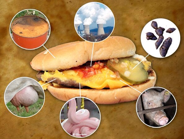 1.Disgusting animal conditions 2.Weird ingredients 3.Low food quality 4.Food safety/cleanliness  5.Food preparation [or lack of] 6.Trans fats 7.(slime)preserve  8.Environmental hazards 9.High fat, low nutritional value 10.Obesity