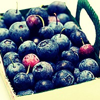 You might not believe this but blueberries can improve or delay short term memory loss, so get eatingg!🍇