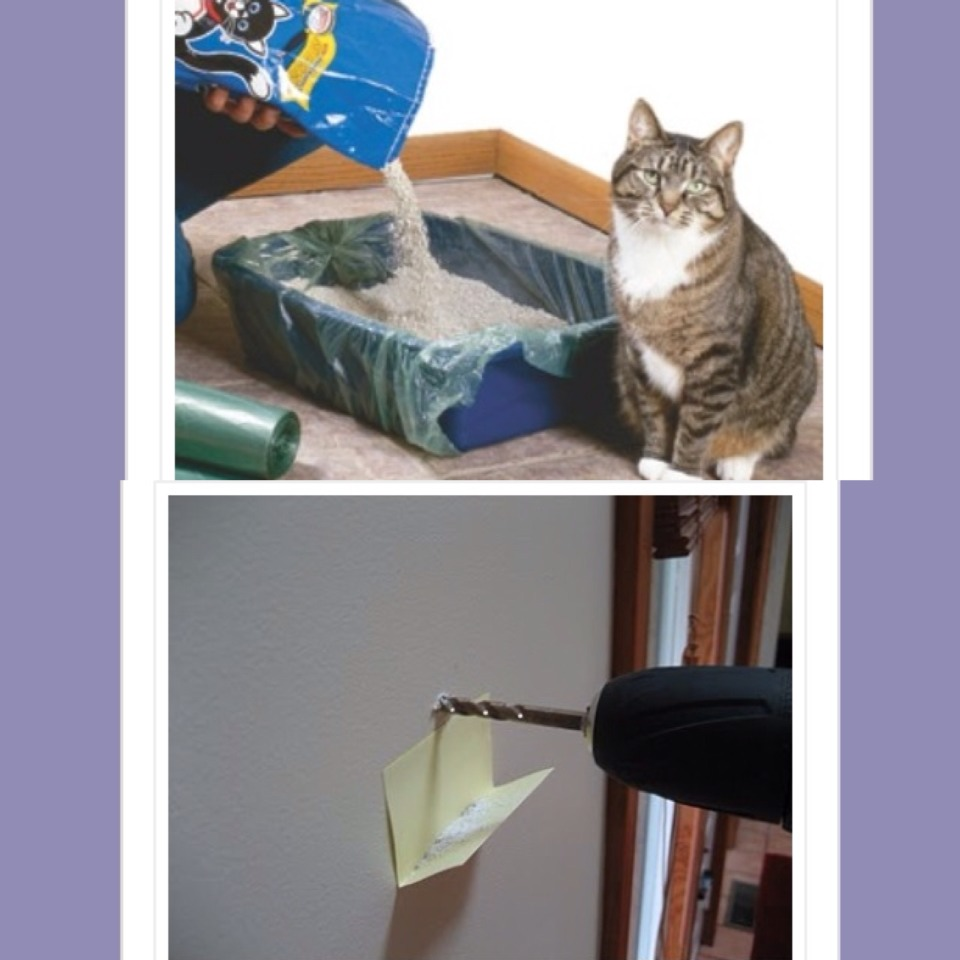 9. Use a garbage bag for your cats litter for quick cleanup  10. Use a post it note to catch fallout while drilling