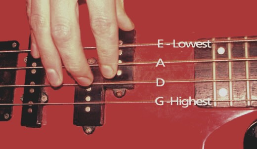 These are the strings on a bass if your super new to this