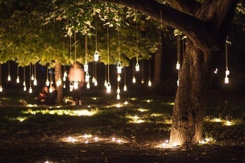 Decorate your backyard with tree lights for a moremagical vibe