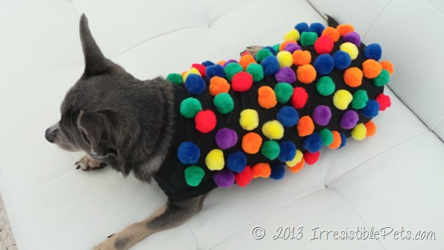 Musely 6 easy costumes for dog solutioingenieria Image collections