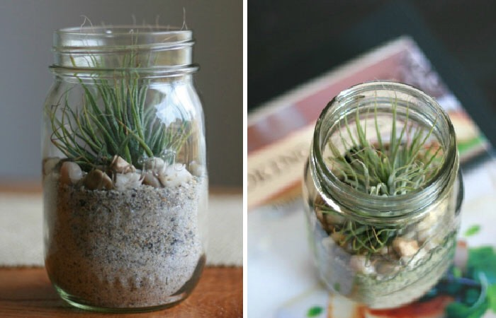 Make a small garden! Fill with sand then add rocks/shells and a small plant!