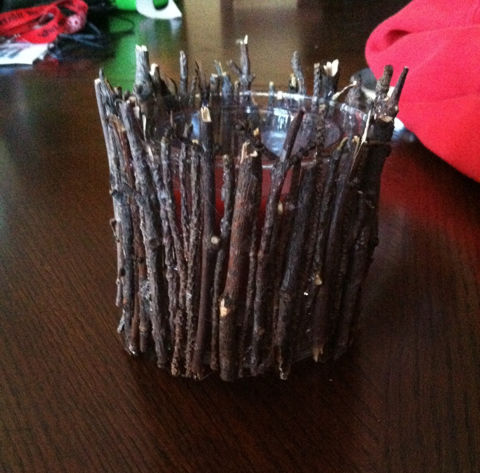 Very cute for the fall time! Just collect some twigs from the yard, and hot glue them around a candle jar! SO easy and SO cute! It looks amazing lit up or not!! Love having this in my living room!! <3 let me know if you try it!