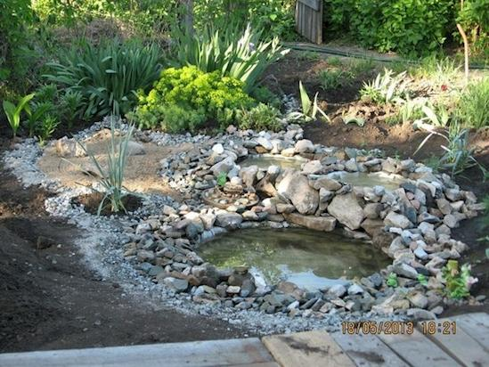 Fill the tire ponds with water and arrange some plants around them.