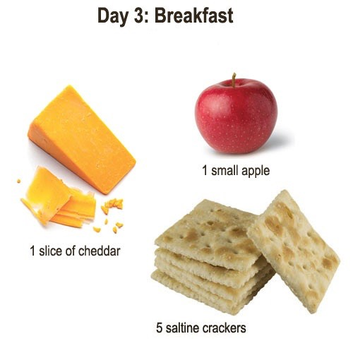 Substitutes   Cheddar Cheese: Eggs, cottage cheese, ham, soy cheese, soy milk, cabbage or tofu Saltine Crackers: Rice cakes or any other cracker with equal calorie value (13 cal per cracker) Apple: plums, peaches, grapes, zucchini, pears or dried apricots