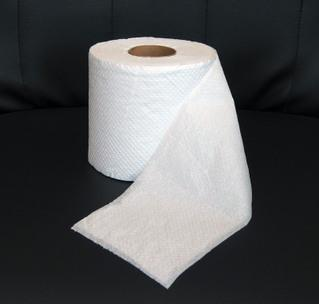 Just take a piece of toilet paper and (if it's not already 1ply) separate the ply (so if you have a piece of 2ply toilet paper, you want to peel the ply apart to make two separate pieces) and there you go! use the pieces to blot oil throughout the day!