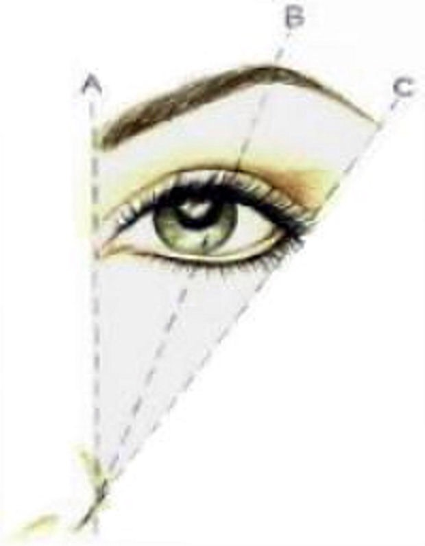 This is how to make sure your eyebrow fits your face. For the front of the brow measure from your nostril up. For the arch go from your nostril through the centre of you eye. The tail you go from your nostril to the edge of your eye.