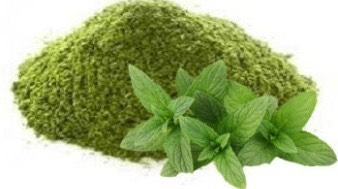 Mint is great for summers. Whether you use it in your drinks or your face mask, mint is just amazing to soothe the irritated skin and gives you a lasting freshness. Mint has a cleansing, soothing and cooling effect that makes it suitable for most skin types. It is known to reduce inflammation too.