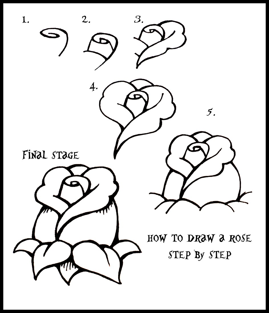 how to draw a rose - 700×814