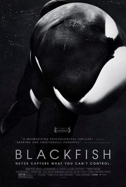 This film will open your eyes!!!!!! Do your part! Save our oceans !Before it's to late! and end captivity! Just spread this movie!!!  Www.blackfish.com
