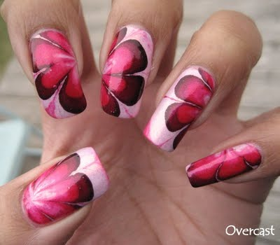 how to get licensed to do nails