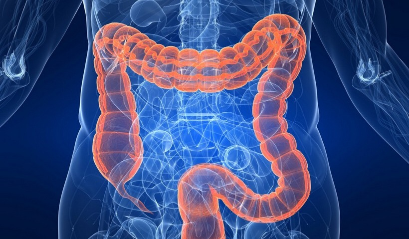 The heavy mucus coating in the colon thickens and becomes a host of putrefication. The blood capillaries to the colon begin to pick up the toxins, poisons and noxious debris as it seeps through the bowel wall. All tissues and organs of the body are now taking on toxic substances.