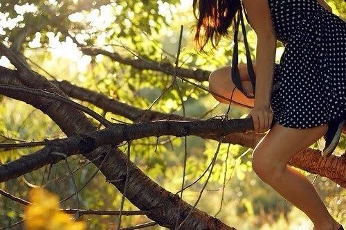 13. Climb a tree