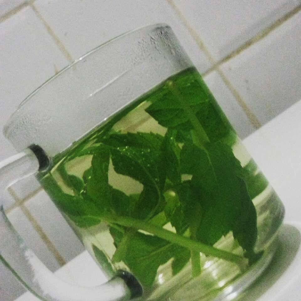 Mint tea for a relaxing mind & the body ,after a long hard day, make you sleep comfortable .