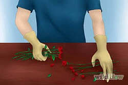 1)Select the toughest stems. When roses are given or bought, find the roses with the toughest stems, and make sure the leaves remain intact.