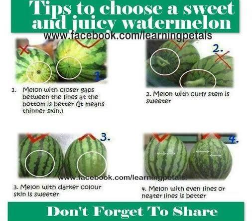 I love a sweet and juicy watermelon, and it is so disappointing to cut it open and get a flovrless one.  These tips will help!  Thank you for looking, and please like and share the knowledge!  <3