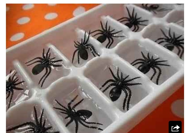 Plastic ice spiders make any drink spooky