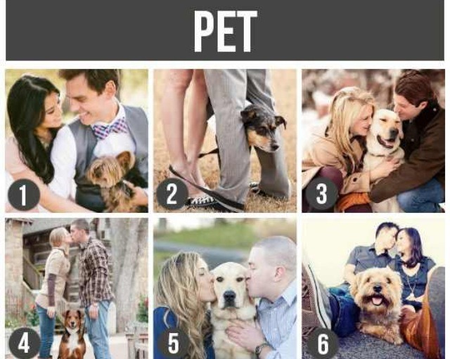 Dog Pet Photo Prop Engagement
