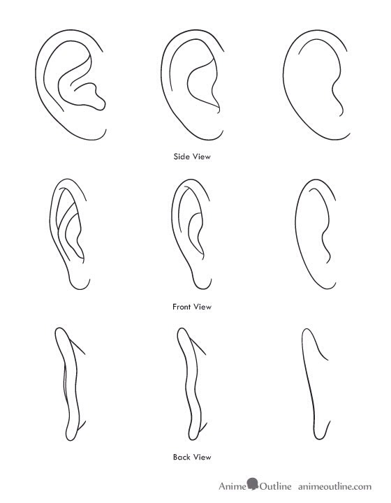 Here is how to draw her ears.