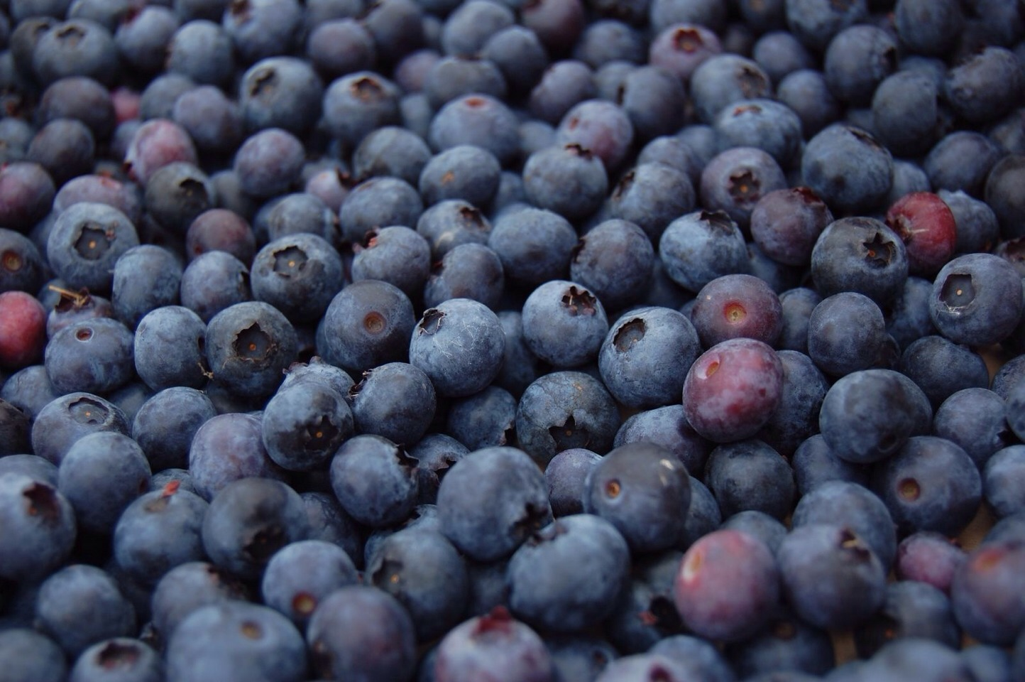 --> Blueberries have highest antioxidant levels. --> Blueberries combat the factors that result in metabolic syndrome. This means that blueberries take on insulin resistance, hypertension, obesity, and cholesterol.