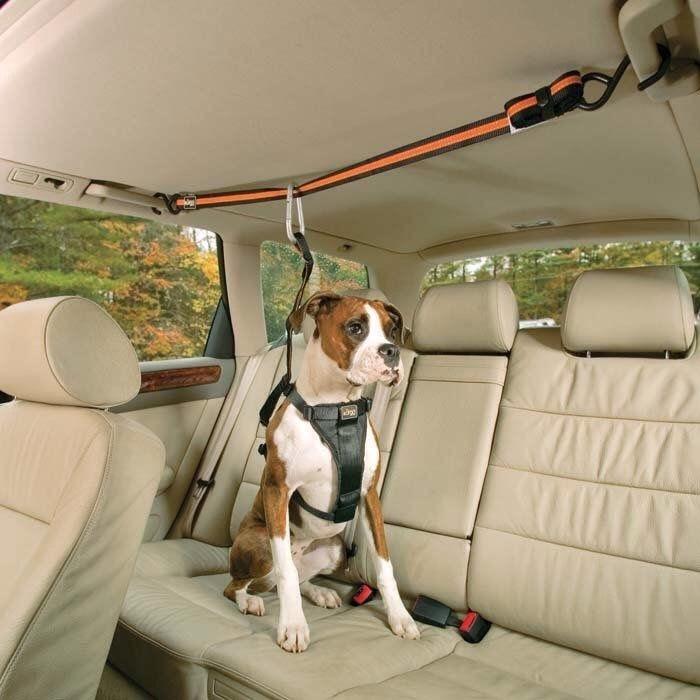 25.Tru-Smart Harness and Auto Zip Line $17.99