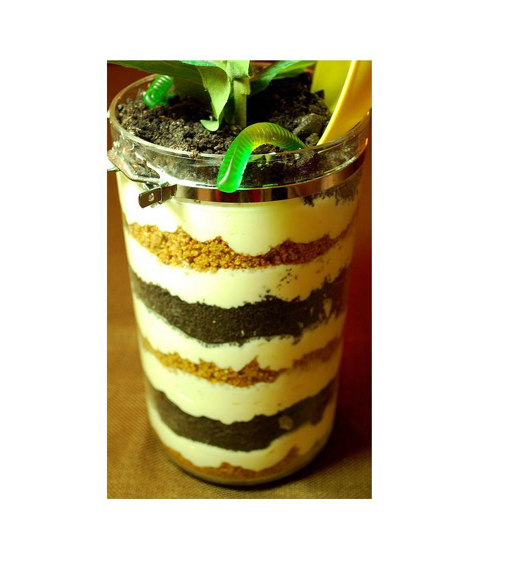 Dirt has never looked so appetizing! This flower pot cake looks almost as good as it tastes.