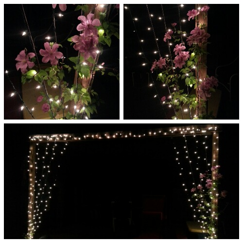 Hang christmas lights down from your deck then plant vines below them. The vines will grow up the christmas lights creating a light curtain.