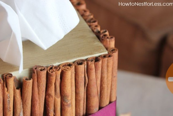 Make a Cinnamon stick tissue box cover! Please like!