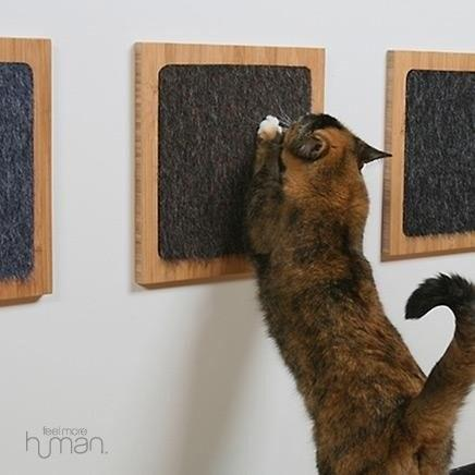 11. Glue a carpet sample to a wooden frame for a minimalist cat scratch post. It's practically wall art.