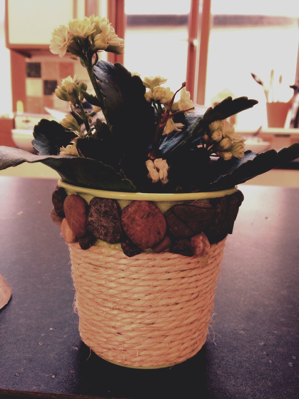Get a flower vase, and using strong glue add rope and sea stones.