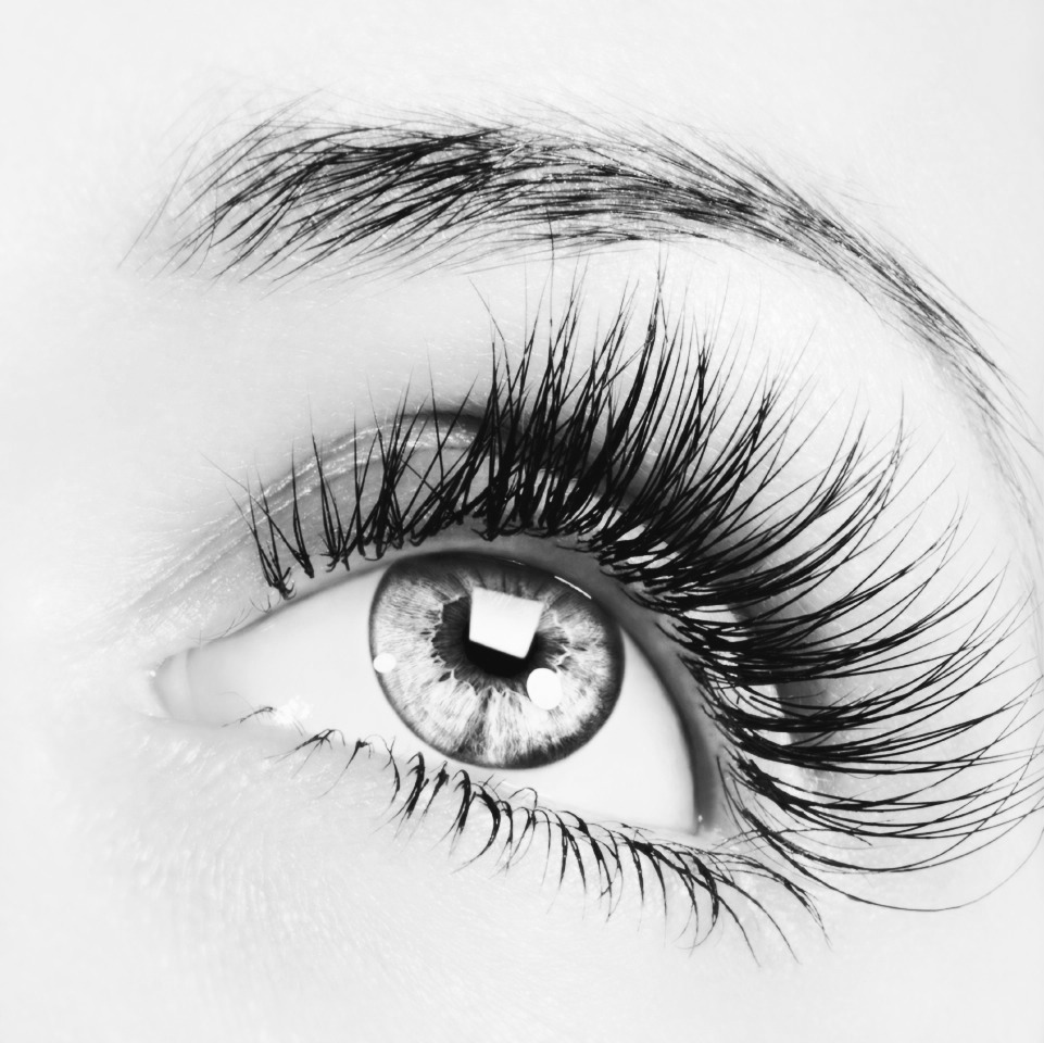 Every night after your night routine and before going to bed, get some Vaseline and gently put it on your lashes at the base of the lash to the top. You can apply with your fingers,mascara wand, or a cotton swab. Good luck, and enjoy.