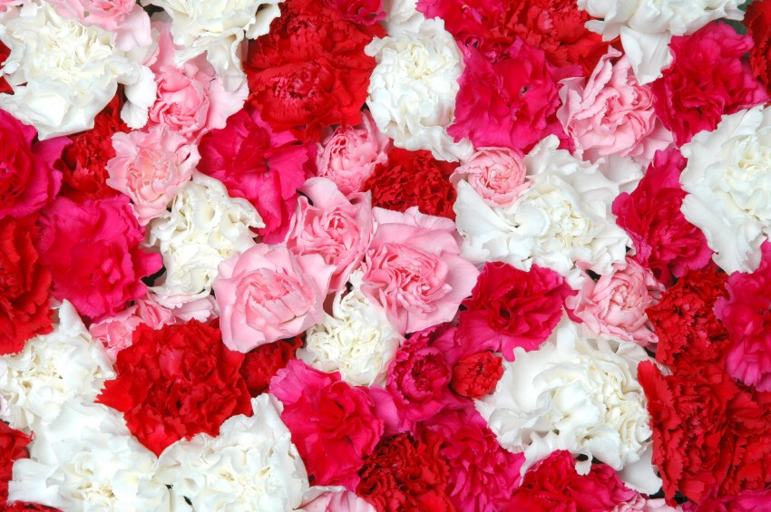 Get your favorite smelling flower and rip the petals off, and sprinkle the petals in the mix.